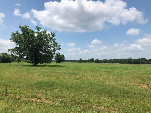 2 Riverbend Court, Fulshear, TX 77441 (MLS #29594104) :: Lerner Realty Solutions