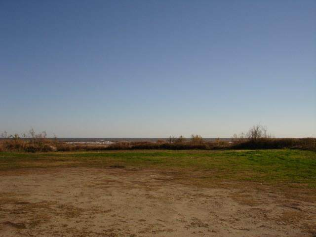 1002 Hwy 87, Gilchrist, TX 77617 (MLS #30319835) :: Texas Home Shop Realty