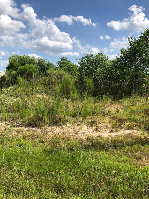 1032 Road 3548, Cleveland, TX 77327 (MLS #31024423) :: The SOLD by George Team