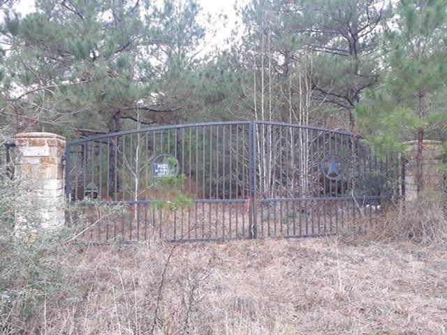 1034 Lloyd Bell Road, Trinity, TX 75862 (MLS #31073036) :: The SOLD by George Team