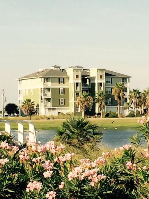 26540 Mangrove Drive #302, Galveston, TX 77554 (MLS #31098127) :: The Heyl Group at Keller Williams