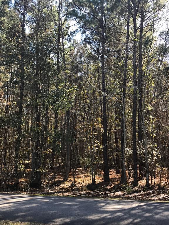 Lot 8 Roman Forest, Roman Forest, TX 77357 (MLS #31458101) :: TEXdot Realtors, Inc.