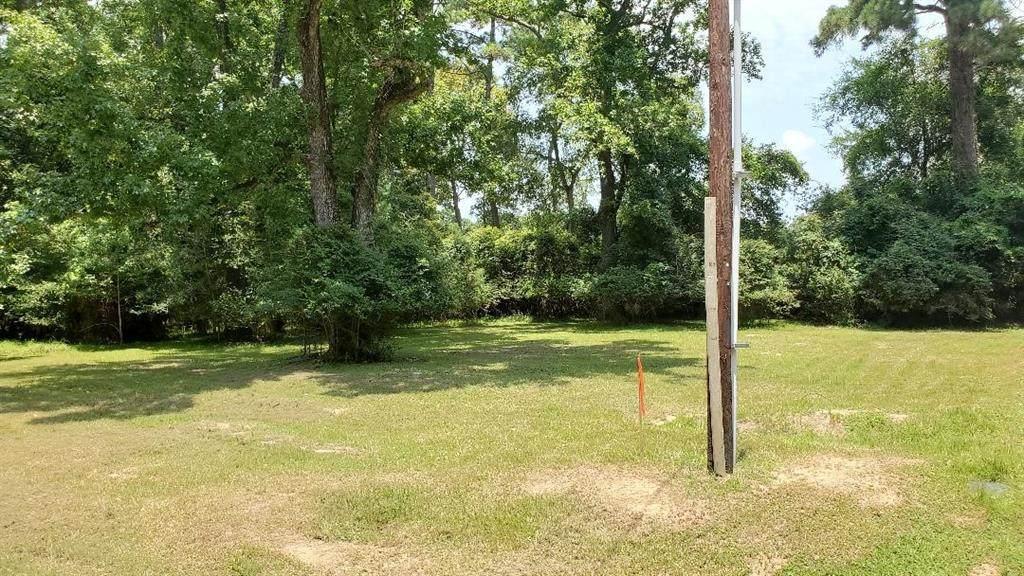 513 Magnolia Point Drive - Photo 1