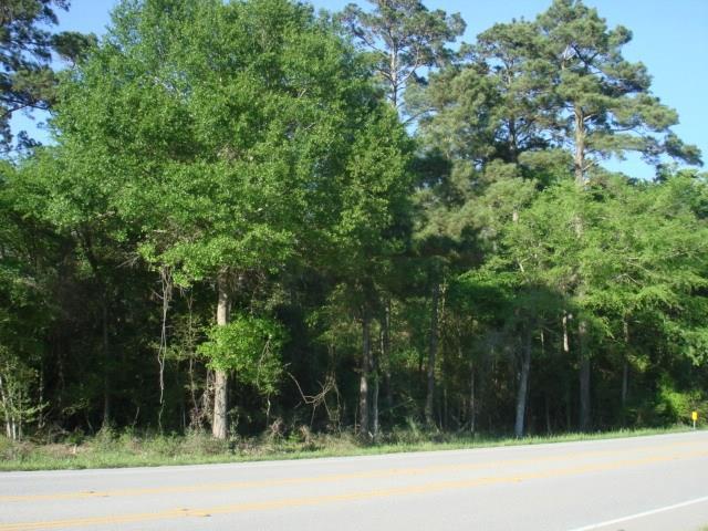 17828 Fm 1097 Road, Montgomery, TX 77356 (MLS #31829975) :: Texas Home Shop Realty