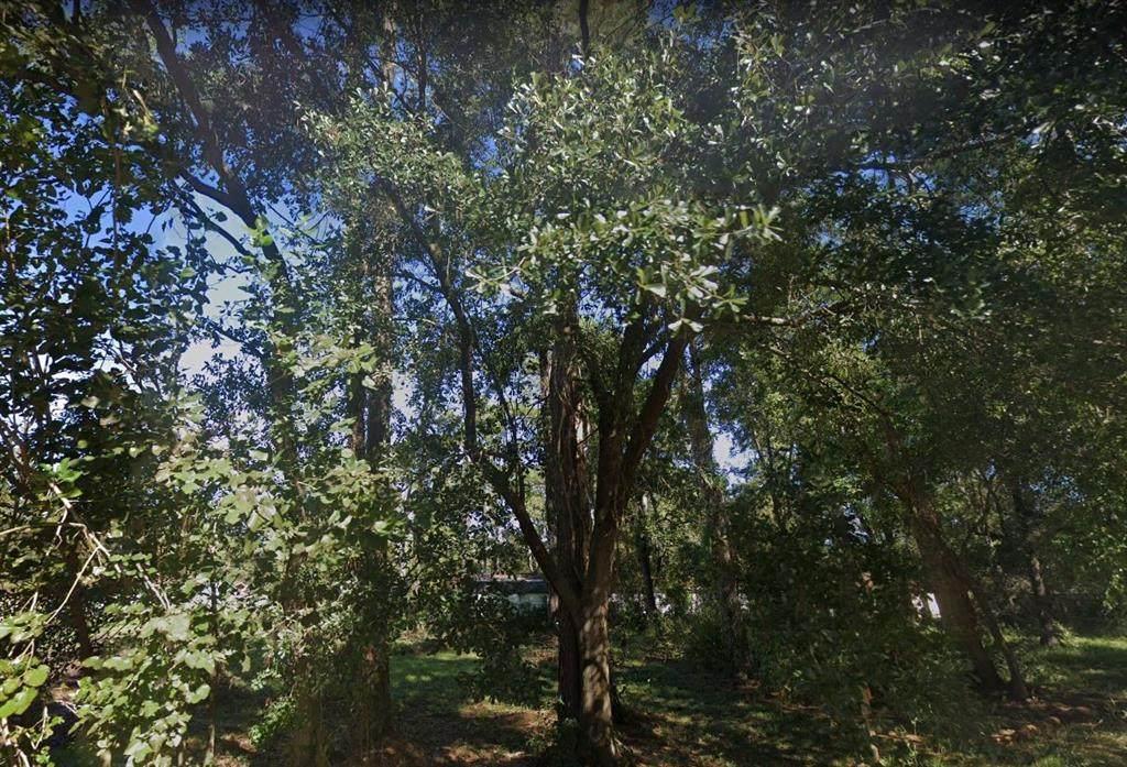 6519 Rosemary Lane - Photo 1