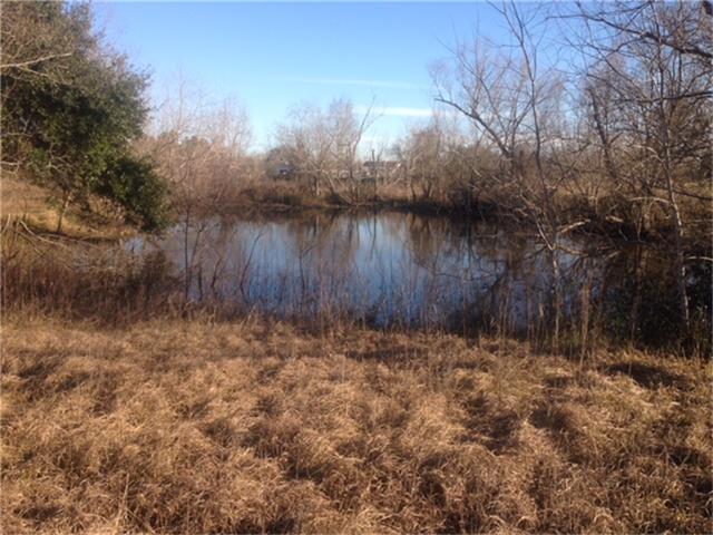 0 Quail Ridge Drive, Manvel, TX 77578 (MLS #32442724) :: Christy Buck Team