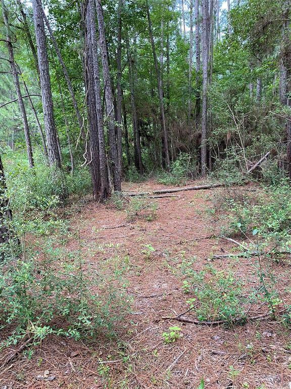 66 Beaver Lane Lane, Huntsville, TX 77340 (MLS #32783352) :: Guevara Backman