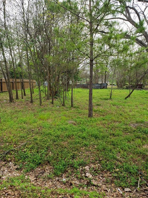 6522 Apollo Street, Houston, TX 77091 (MLS #33137346) :: Ellison Real Estate Team