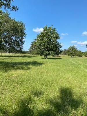 TBD W Chambless Lane, Normangee, TX 77871 (MLS #33486669) :: The Home Branch