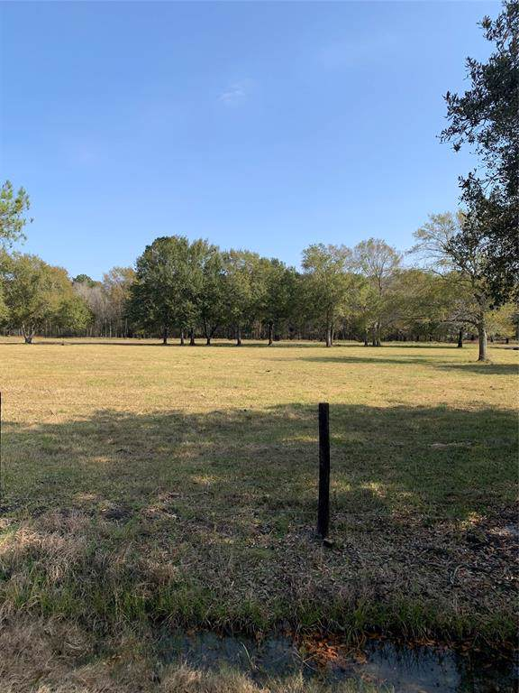 Lot 6 Moore Rd Estates, Beaumont, TX 77713 (MLS #33496123) :: Texas Home Shop Realty