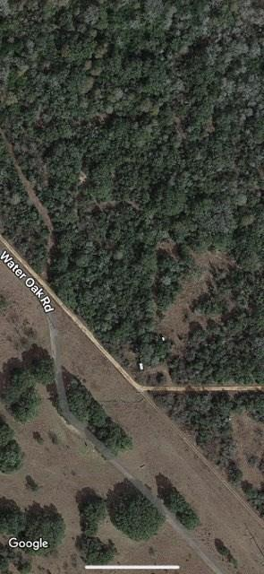 0 Water Oak Road, Columbus, TX 78934 (MLS #33648110) :: Giorgi Real Estate Group