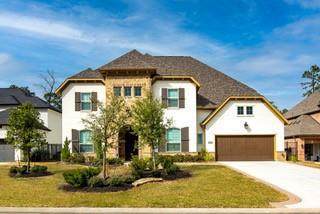 79 N Curly Willow Circle N, Tomball, TX 77375 (MLS #3376611) :: Lisa Marie Group | RE/MAX Grand