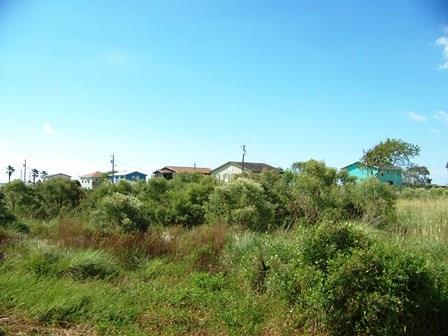 664 Bluewater Street, Sargent, TX 77414 (MLS #34357674) :: Texas Home Shop Realty