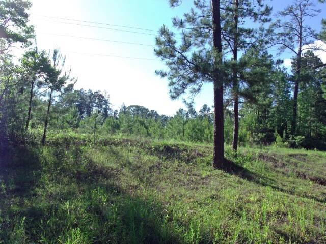 00 County Road 200, Brookeland, TX 75931 (MLS #34376093) :: Connect Realty