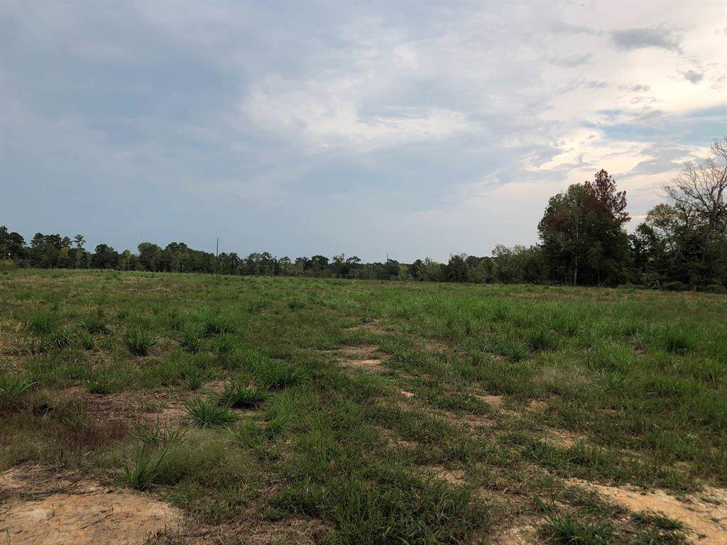 TBD Old Woodville Road - Photo 1