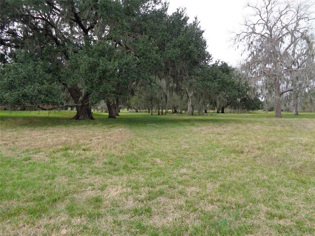 608 Winchester Trail - Photo 1