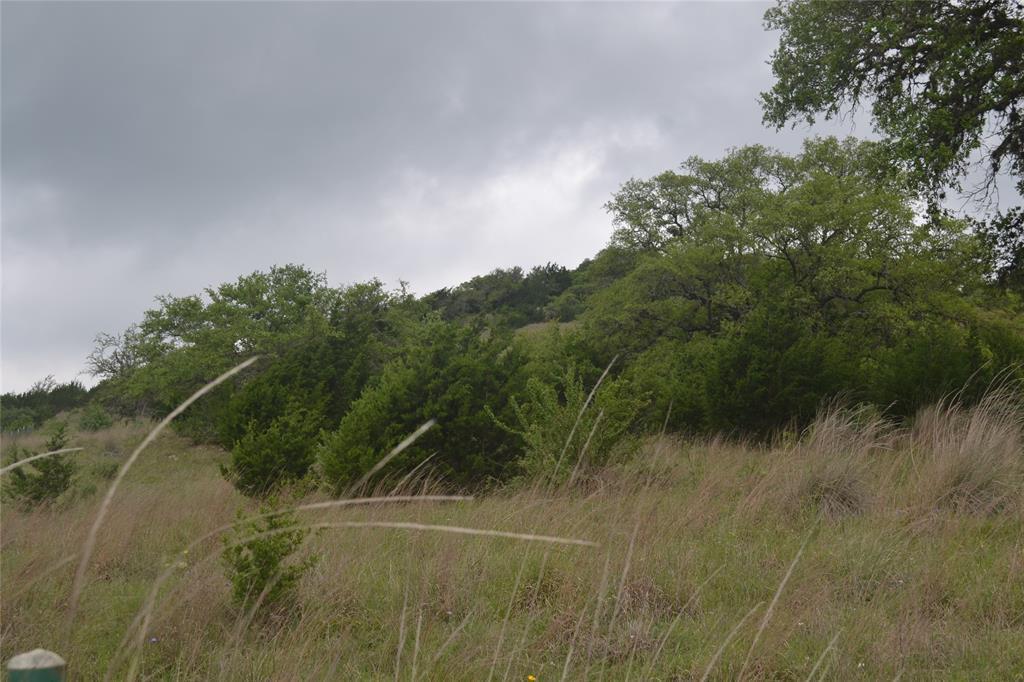 Lot 7 Ranger Creek Road - Photo 1
