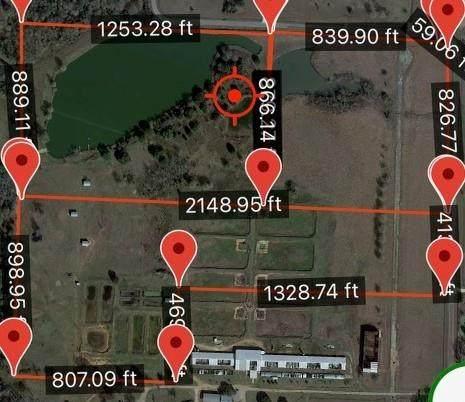 00 Nelson Rd, Hempstead, TX 77445 (MLS #35129754) :: Christy Buck Team