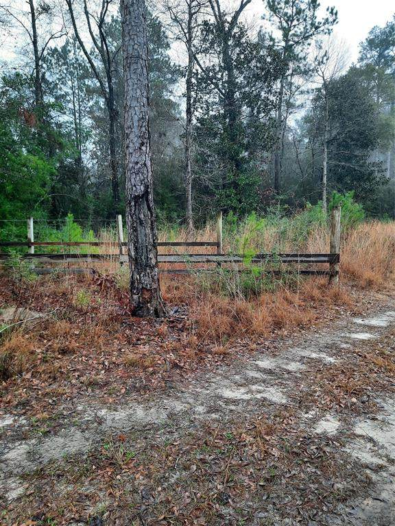2600 County Road 4770 - Photo 1