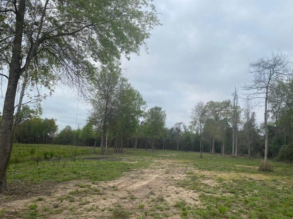 8 Acre County Road 2216 - Photo 1