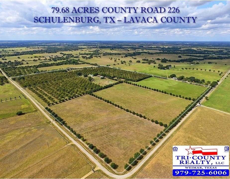 TBD County Road 226 - Photo 1