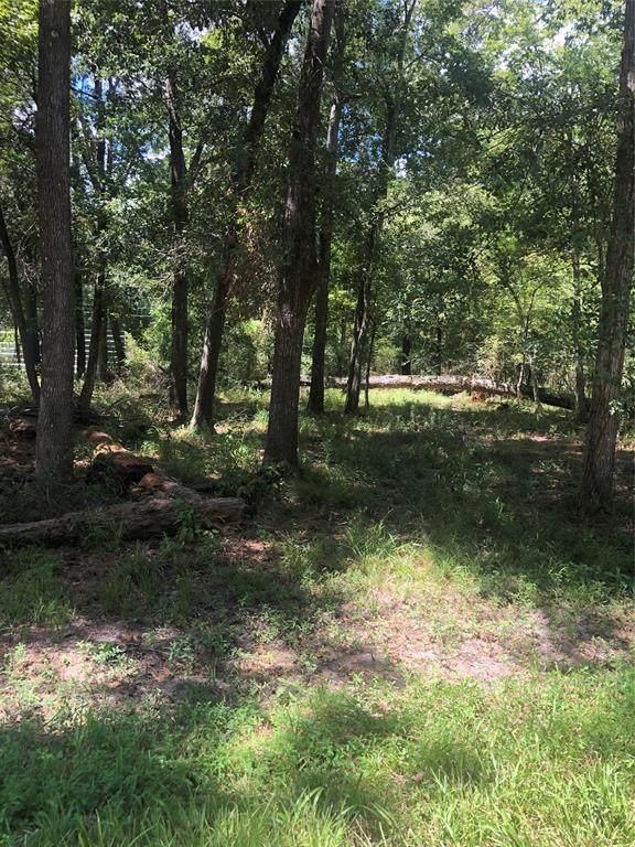 13723 Ashtex Drive, Humble, TX 77396 (MLS #3600484) :: Parodi Group Real Estate