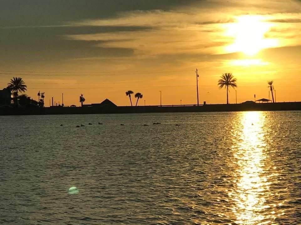 1602 Bayou Shore Drive - Photo 1