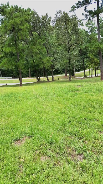 4571 State Highway 156, Coldspring, TX 77331 (MLS #36063052) :: Texas Home Shop Realty