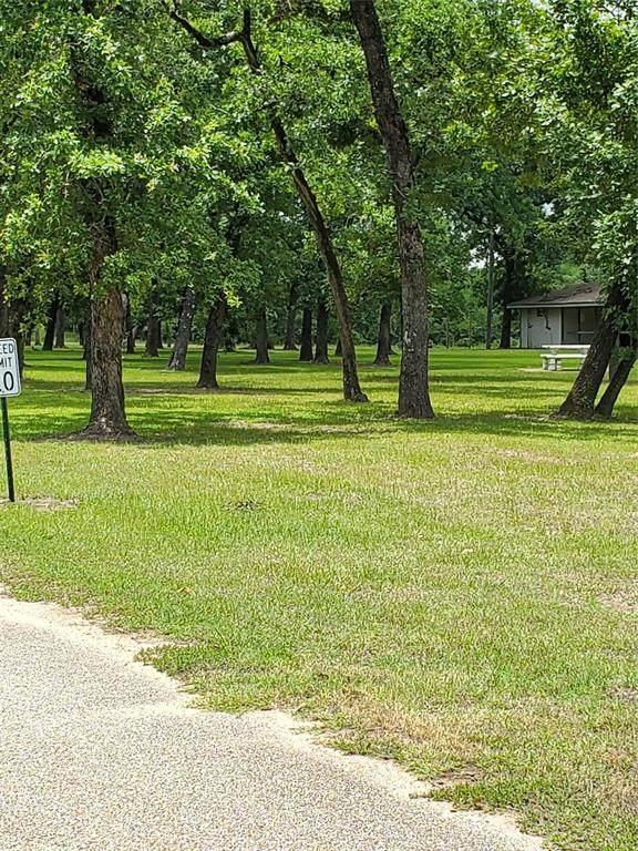 526 S Kiowa Drive, Hempstead, TX 77445 (MLS #36705396) :: Guevara Backman