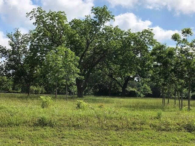 4711 Riverbluff Court, Fulshear, TX 77441 (MLS #37089859) :: The SOLD by George Team