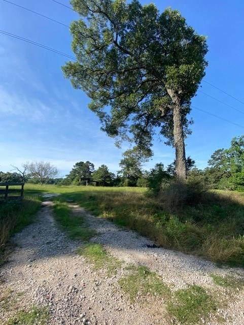 3 Acres Cedar Lane Loop, Willis, TX 77378 (MLS #37834267) :: Green Residential