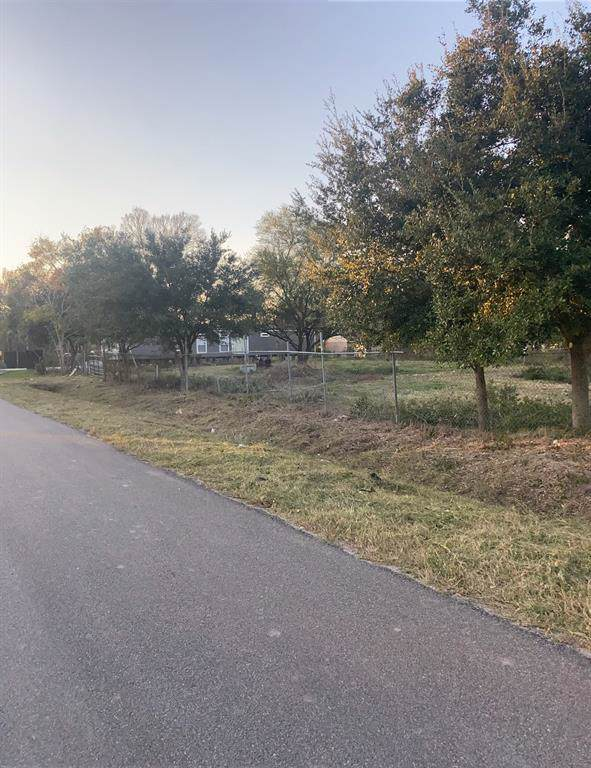 000 Mulberry Avenue, Fresno, TX 77545 (MLS #38096634) :: Ellison Real Estate Team