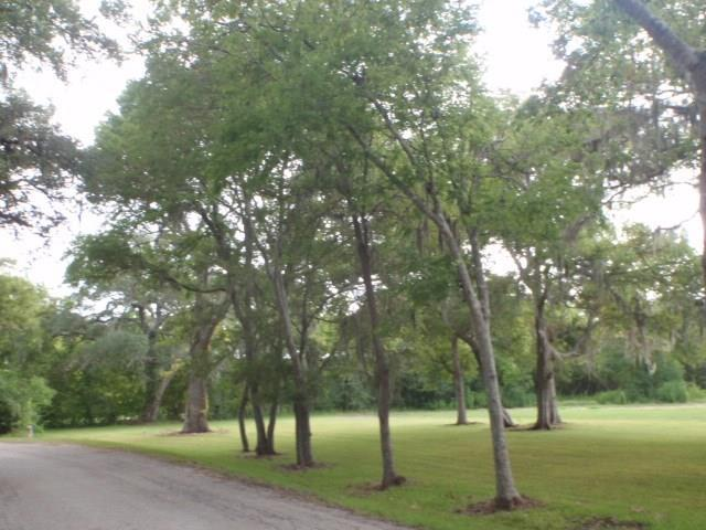 28A-30A Cr 297, Sargent, TX 77414 (MLS #38222205) :: The SOLD by George Team