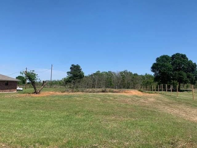 216 Alleda Road, Waller, TX 77484 (MLS #38396033) :: Connell Team with Better Homes and Gardens, Gary Greene