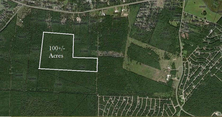 100 A Acres Jenning Branch - Photo 1