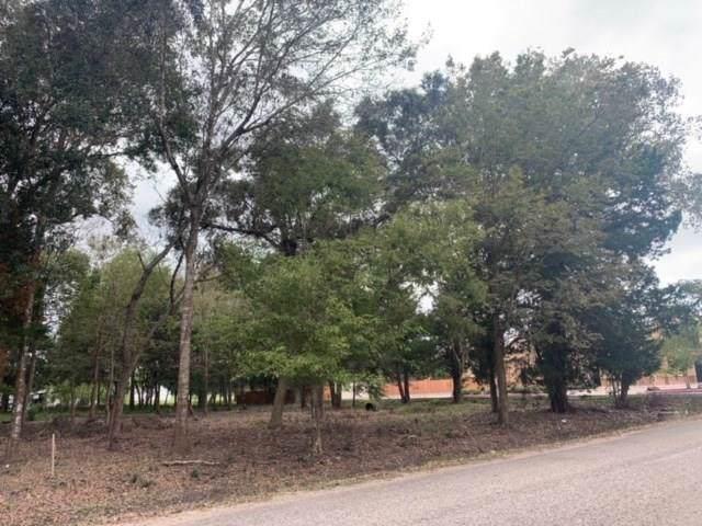 0 Blum Street, Alvin, TX 77511 (MLS #38759933) :: Texas Home Shop Realty