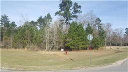 9023 Stone Oak Drive, Montgomery, TX 77316 (MLS #39074065) :: Texas Home Shop Realty