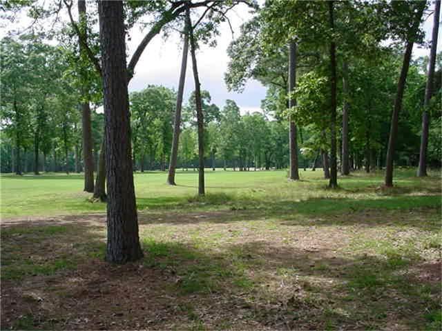 22440 Pebble Beach Way, Huntsville, TX 77320 (MLS #39577259) :: My BCS Home Real Estate Group
