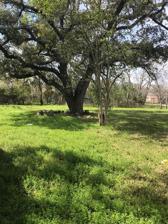 3010 Highway 3, Dickinson, TX 77539 (MLS #39595169) :: Ellison Real Estate Team