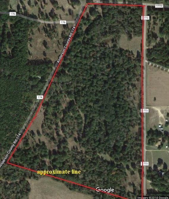 49 Acres Anderson County Road 174, Slocum, TX 75839 (MLS #3971356) :: Texas Home Shop Realty