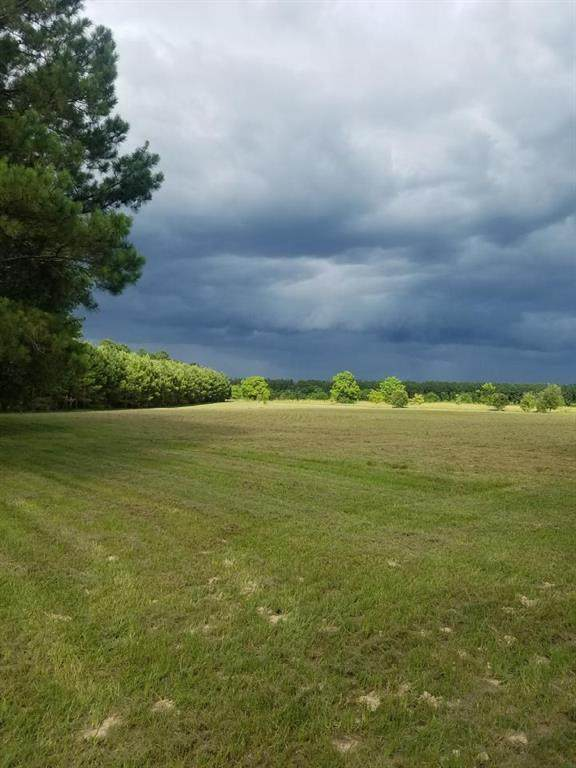 TBD Sugar Maple Road, Kountze, TX 77625 (MLS #39816969) :: The SOLD by George Team