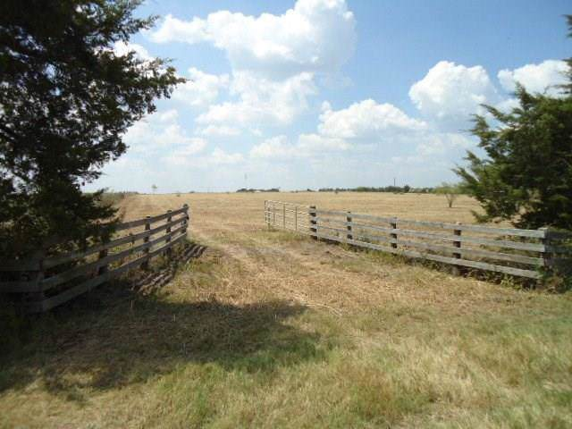 1477 Schulze Road, Freyburg, TX 78956 (MLS #39955887) :: The SOLD by George Team