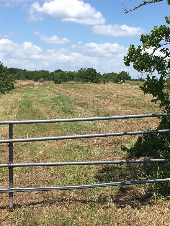 000 Grubbs Road Road, Sealy, TX 77474 (MLS #4022443) :: Texas Home Shop Realty