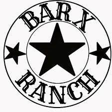 586 Cabana Trail, Angleton, TX 77515 (MLS #40324250) :: Christy Buck Team