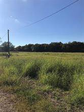 0 County Road 209, Danbury, TX 77534 (MLS #40493779) :: The SOLD by George Team