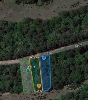 Lots 11,12,13 Owl Drive, Hempstead, TX 77445 (MLS #40583388) :: The Parodi Team at Realty Associates