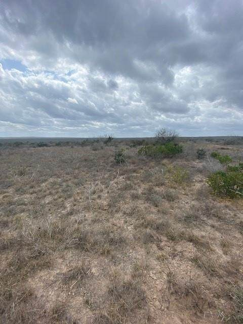 2140 Hwy 59 E, Freer, TX 78357 (MLS #40963661) :: Michele Harmon Team