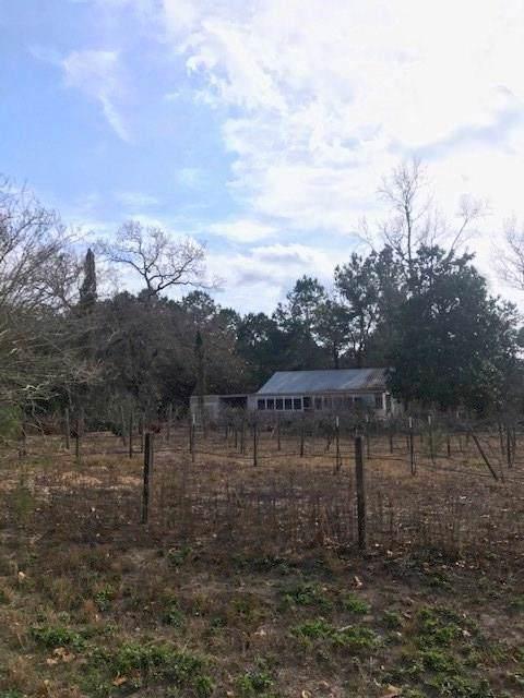 24435 Weeren Road, Montgomery, TX 77316 (MLS #40995370) :: Texas Home Shop Realty