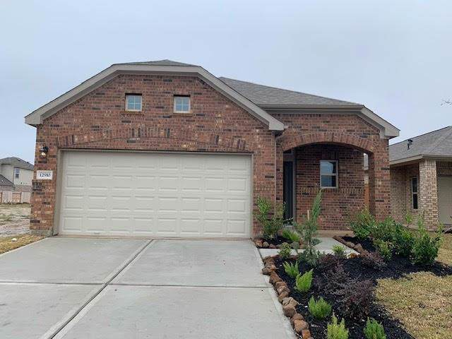 110403 Liberty Cap Drive, Iowa Colony, TX 77583 (MLS #41042612) :: The SOLD by George Team