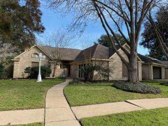 907 Mesa Terrace Drive, Katy, TX 77450 (MLS #41183859) :: Green Residential
